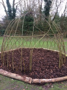 Willow dome on the rec