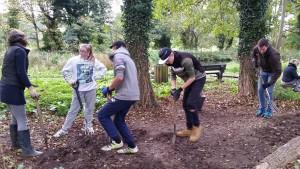 SSYI digging
