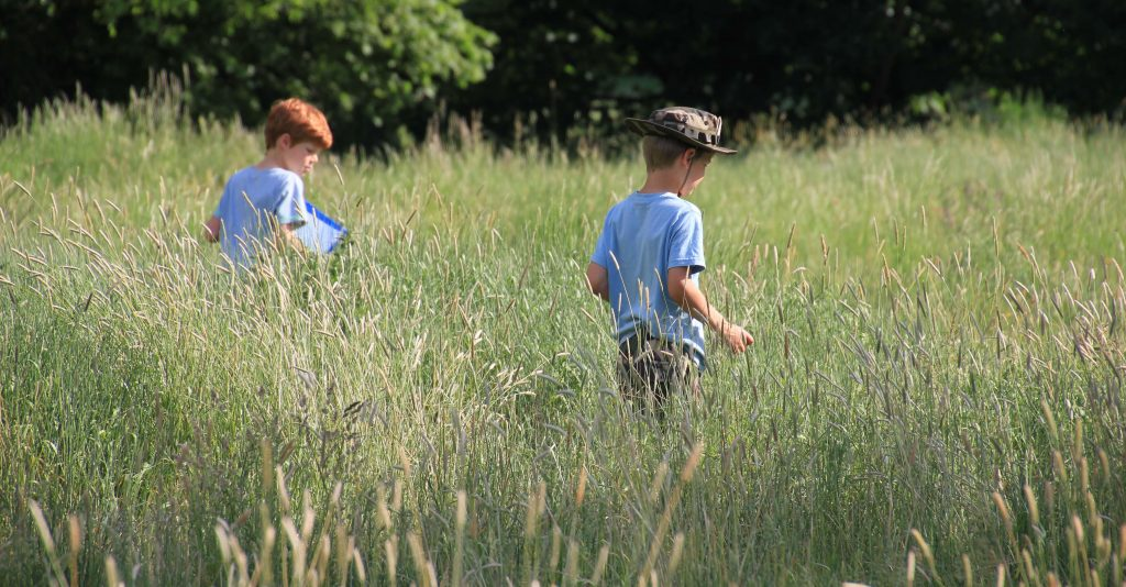 Kids in the meadow