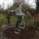 Willow dome planting